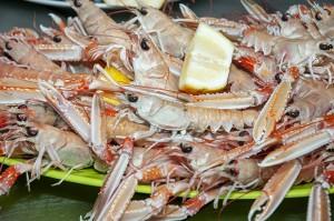 pescato_pupa_ristorante