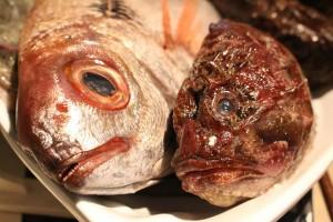 pesce_fresco_pupa_ristorante