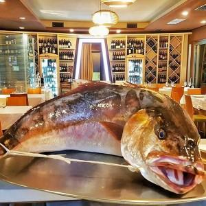 pesce_pupa_ristorante