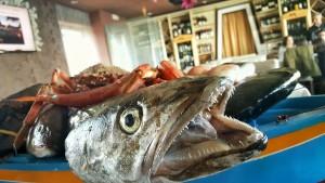 pesdcato_del_giorno_pupa_ristorante